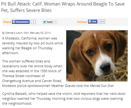 calif woman wraps around a beagle to save pet